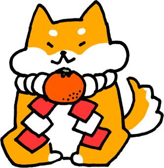 Cute little New Year's card Shiba Inu