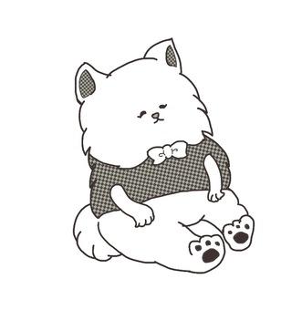 Persian cat sitting
