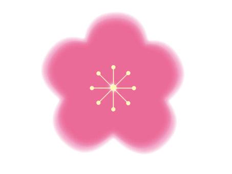 Plum blossom. Peach blossoms