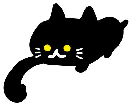 Cat cat pussy