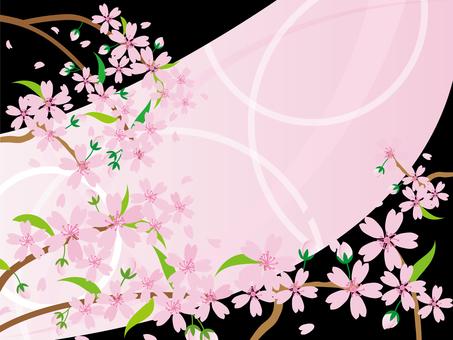 h28 Sakura material 29