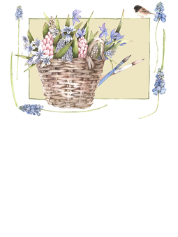 Flower frame 405 - hyacinth and muscari postcard