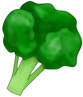 Broccoli (with wire)