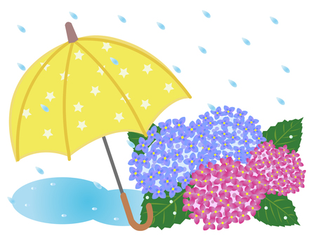Hydrangea and umbrella