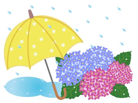 繡球花和傘