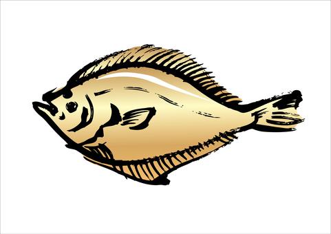 Flounder 01