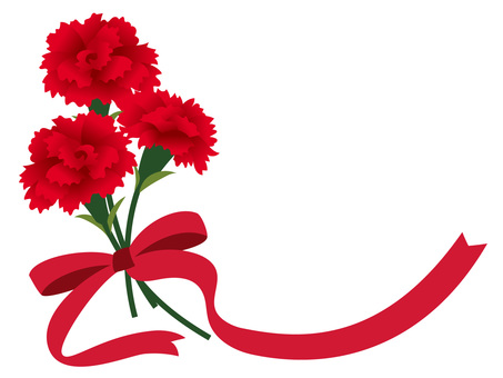 Carnations and ribbons