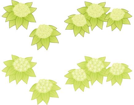 Fukinoto to: color shade 2 types (cs 6)