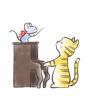 Piano cat 30