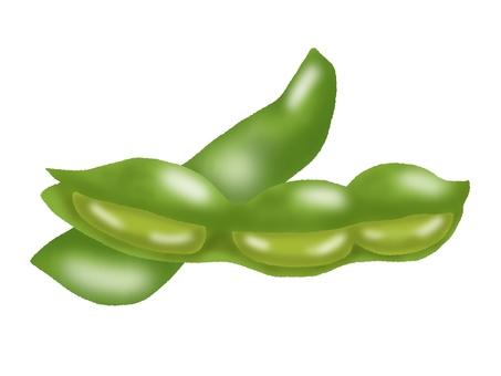 Green soybean (no line)