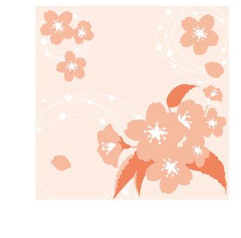 u_ cherry blossoms