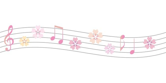 Sakura 011