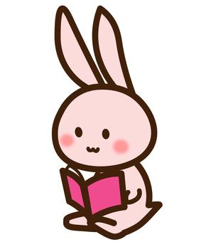 Rabbit reading book 02 / book