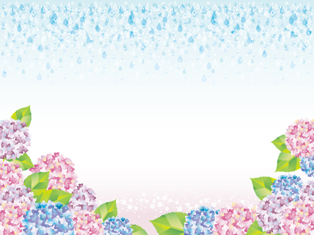 Hydrangea frame (CS) in the rainy season