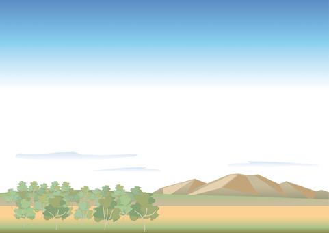 Desert and savanna