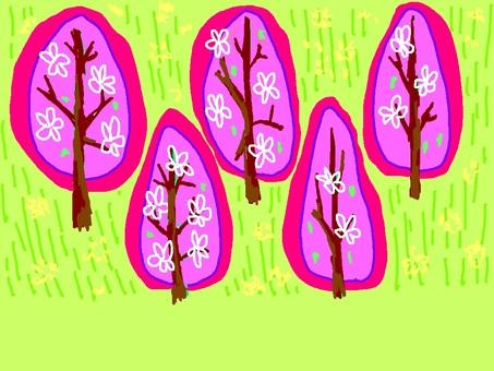 봄 산 벚꽃 나무