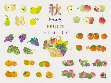 Fruits _ Fall