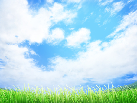 Background and wallpaper frame of lawn and blue sky