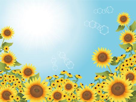 Sunflower and rudbeckia frame