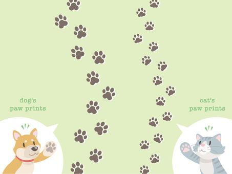 Dog footprints and cat footprints