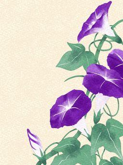 Morning glory watercolor material / purple