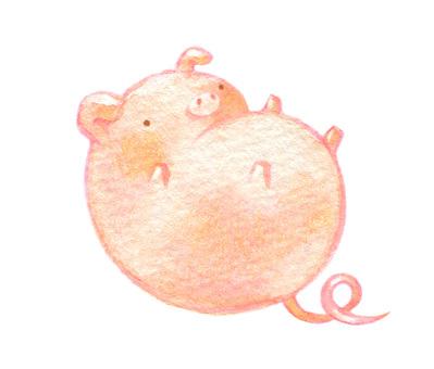 A floating pig