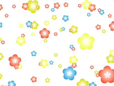 Plum / 桜 _Plum / cherry