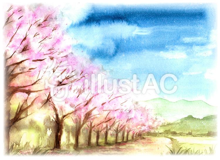 桜並木 風景画イラスト No 1366610無料イラストならイラストac