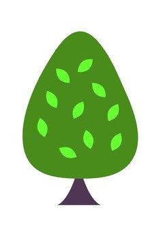 Coniferous (green)