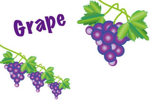Grape grape pop of grapes