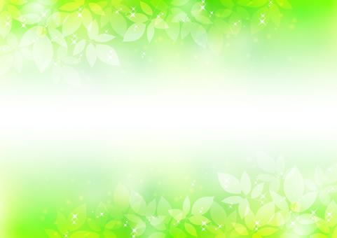 Fresh green material 220
