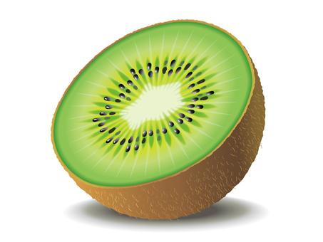 Fruit _ Kiwi 02