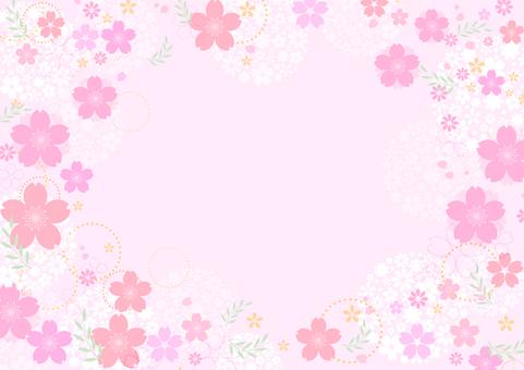 Cherry blossoms 368