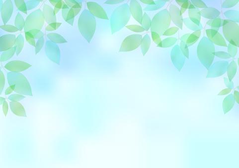 Fresh green material 61