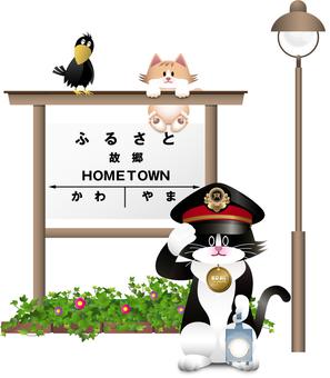 고양이와 역