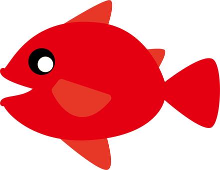 Fish -001