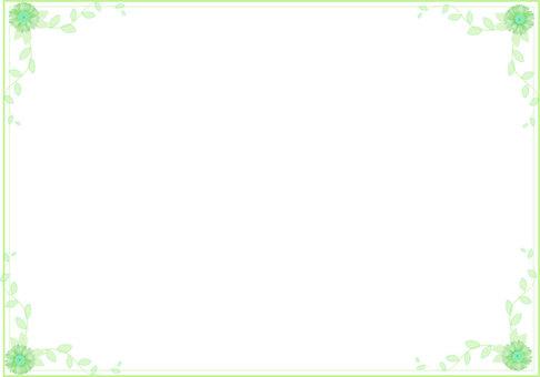 Gerbera's frame green