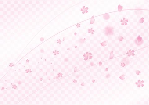 Sakuraguki 2