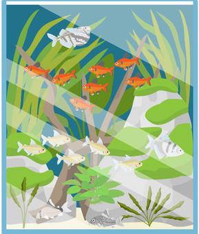 Kalasin Aquatic Aquarium 2