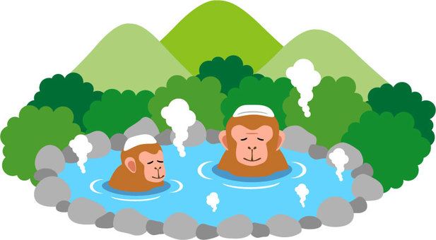 Monkeys and hot springs