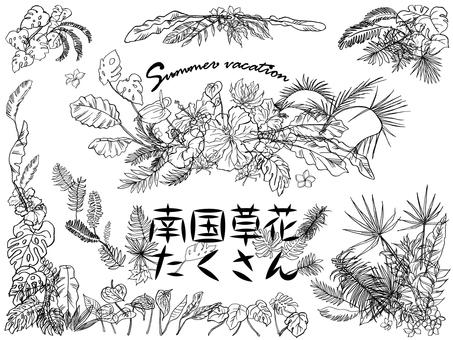Lots of tropical flowers-line art