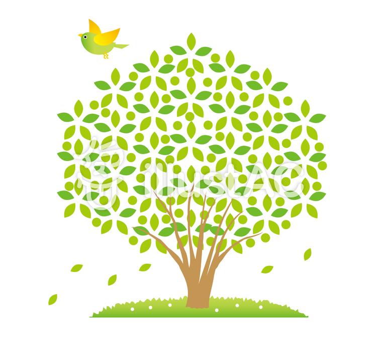 木と風と鳥とイラスト No 84380無料イラストならイラストac