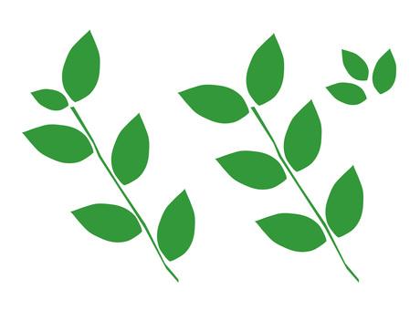 叶子材料叶子