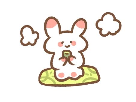 Rabbit drinking tea