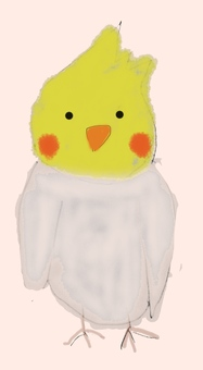 Cute bird illustration cockatiel