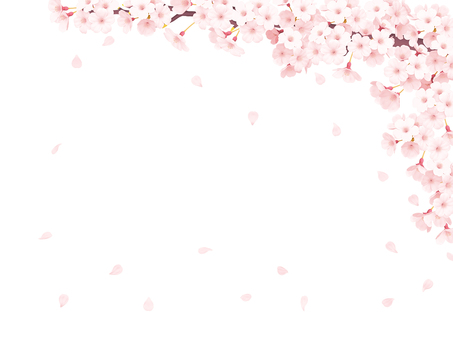 Sakura frame PNG