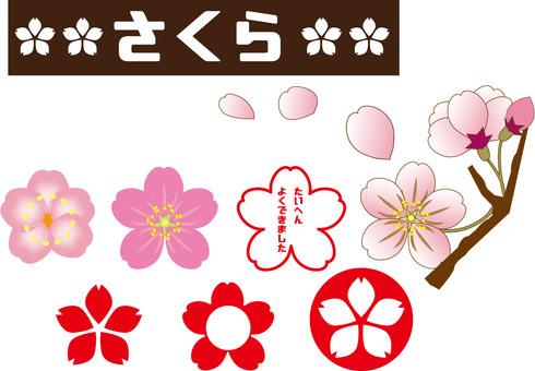 Cherry blossoms (petals, buds)