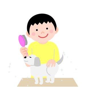Men brushing dogs