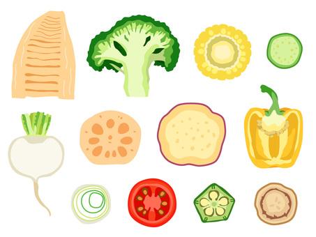 食材_野菜_セット(断面)2_線なし
