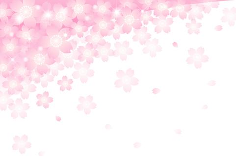 벚꽃의 프레임 41